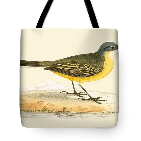 Grey Headed Yellow Wagtail Tote Bag