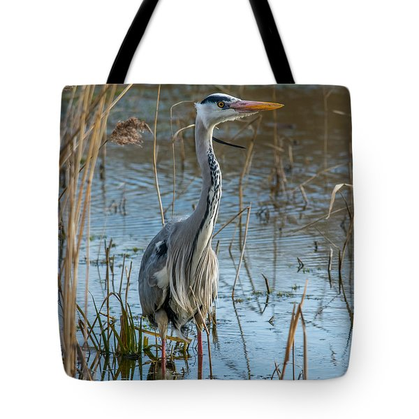Grey Heron Hunting Tote Bag