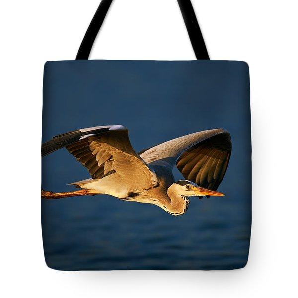 Grey Heron In Flight Tote Bag
