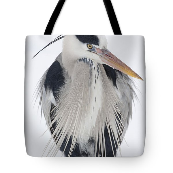 Grey Heron In The Snow Tote Bag