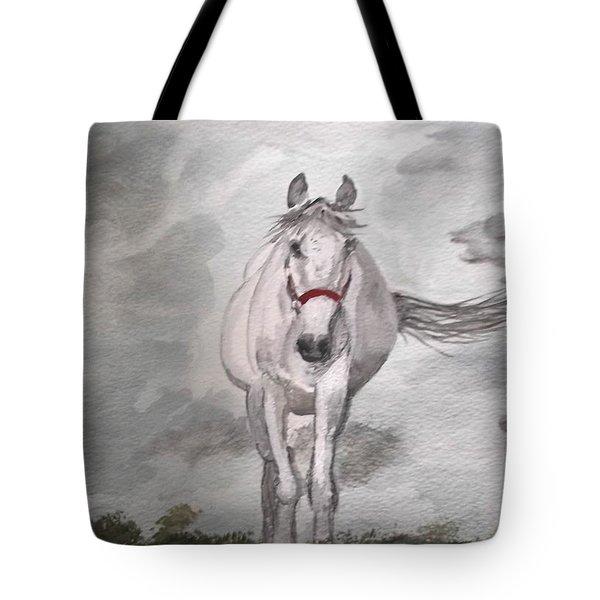 Grey On Grey Tote Bag