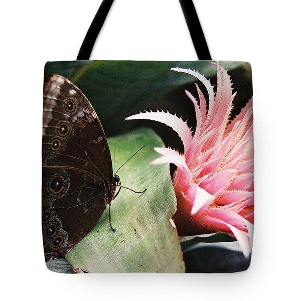 Grey Pansy Pink Bromeliad Tote Bag
