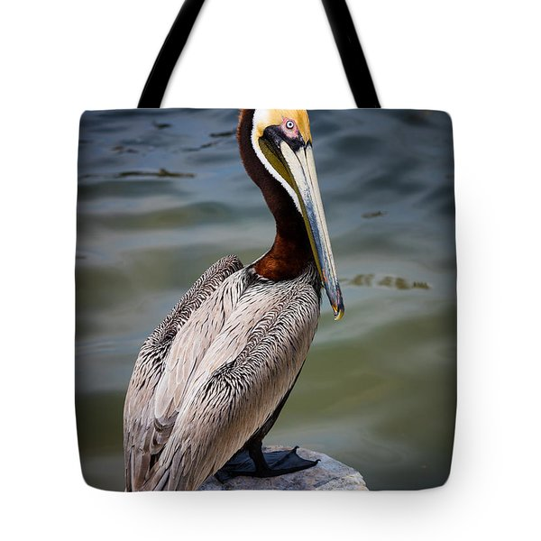 Grey Pelican Tote Bag by Inge Johnsson