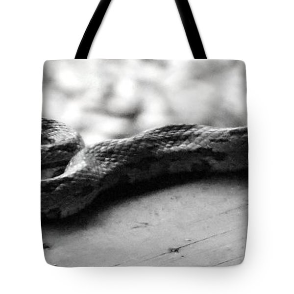 Grey Rat Snake Tote Bag