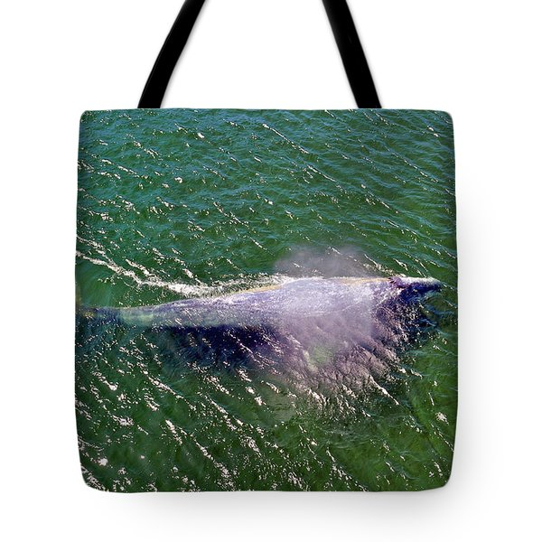 Grey Whale Tote Bag