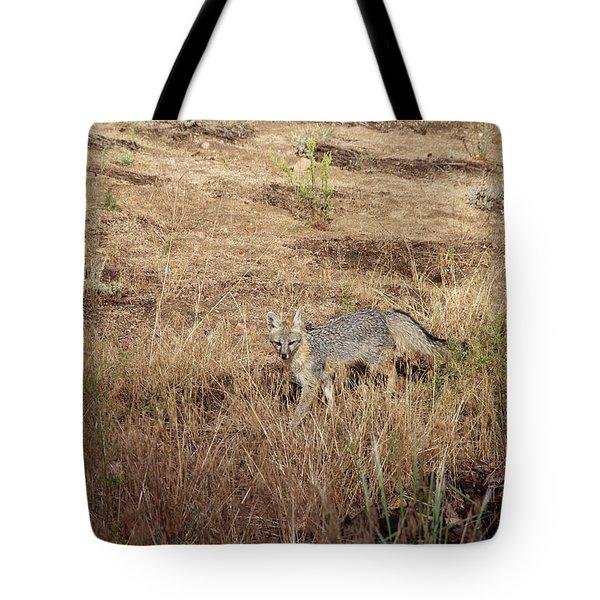 Greyfox1 Tote Bag