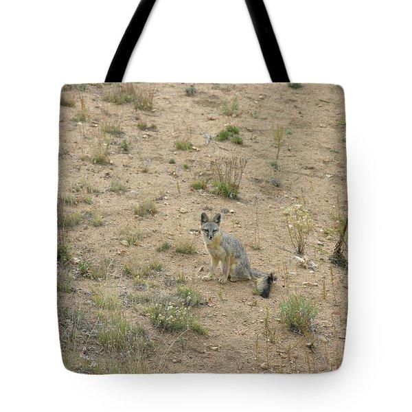 Greyfox5 Tote Bag