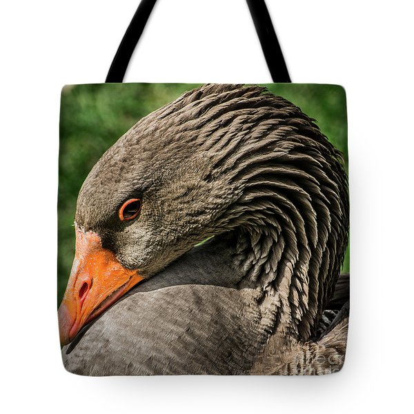 Greylag Goose Portrait  Tote Bag by Gary Whitton