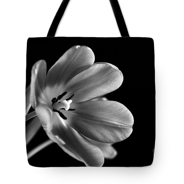 Grieving Again Tote Bag