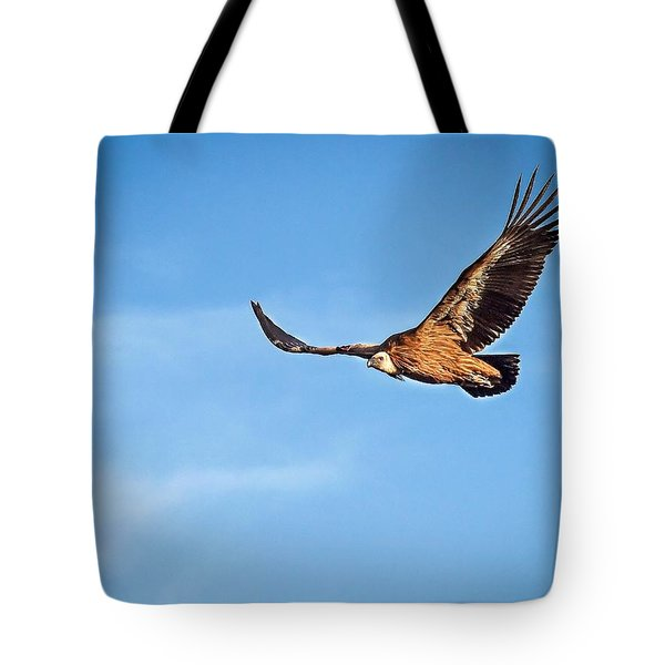 Tote Bag featuring the photograph Griffon Vulture by Meir Ezrachi
