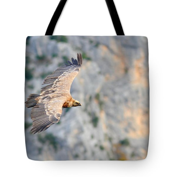 Griffon Vulture Tote Bag by Richard Patmore