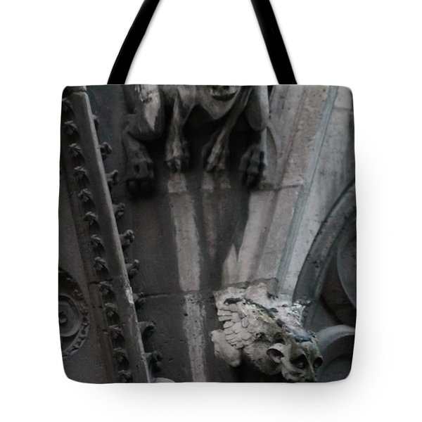Tote Bag featuring the photograph Griffons by Christopher Kirby