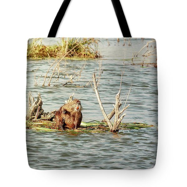 Tote Bag featuring the photograph Grinning Nutria On Reeds by Robert Frederick