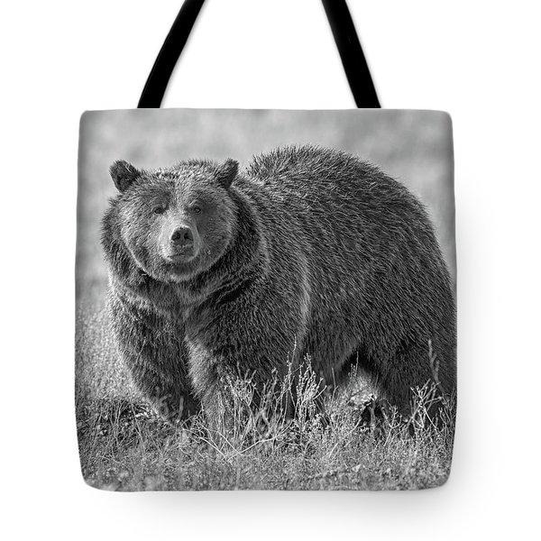 Brutus The Bear Tote Bag