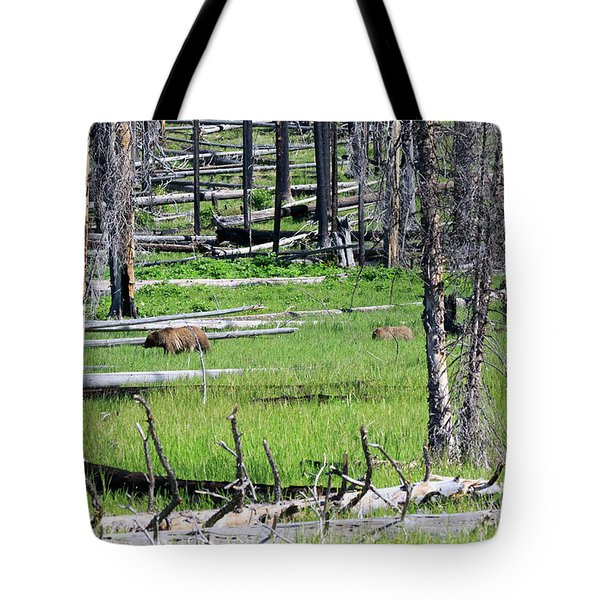 Grizzly Bear And Cub Cross An Area Of Regenerating Forest Fire Tote Bag by Louise Heusinkveld