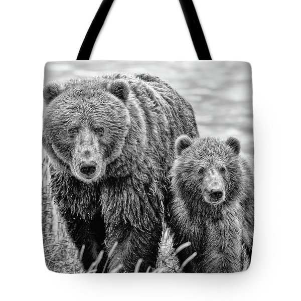 Grizzly Bear And Cub Tote Bag