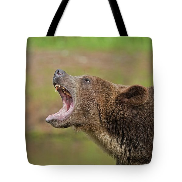 Grizzly Bear Growl Tote Bag
