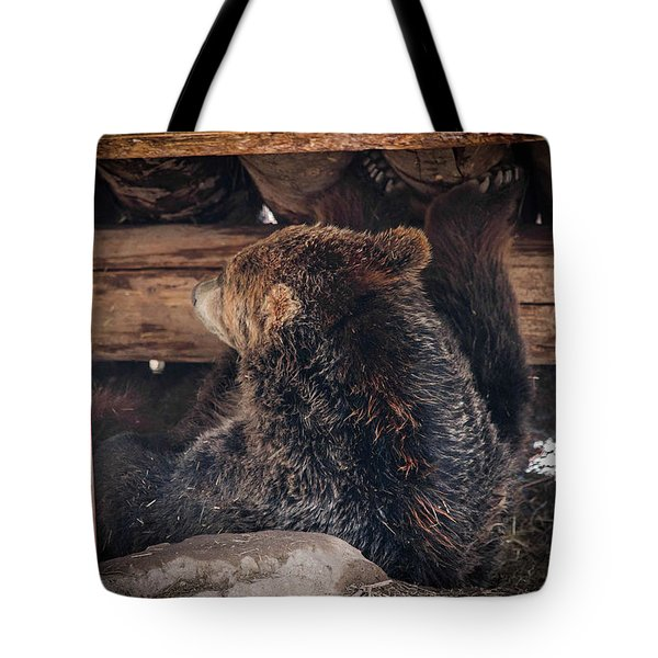 Grizzly Bear Under The Cabin Tote Bag by Dan Pearce