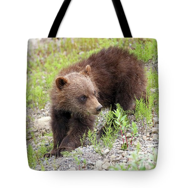 Grizzly Cub II Tote Bag