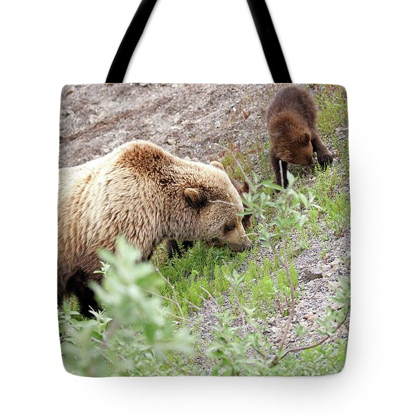 Grizzly Sow And Cubs Tote Bag