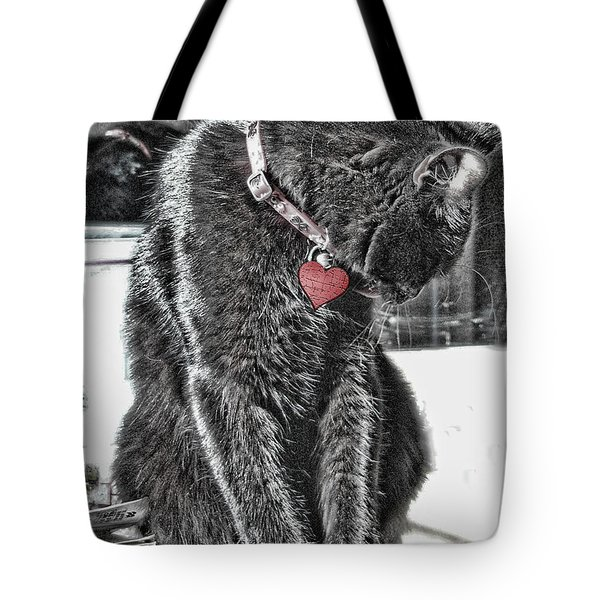 Tote Bag featuring the photograph Groomin' by Rhonda McDougall