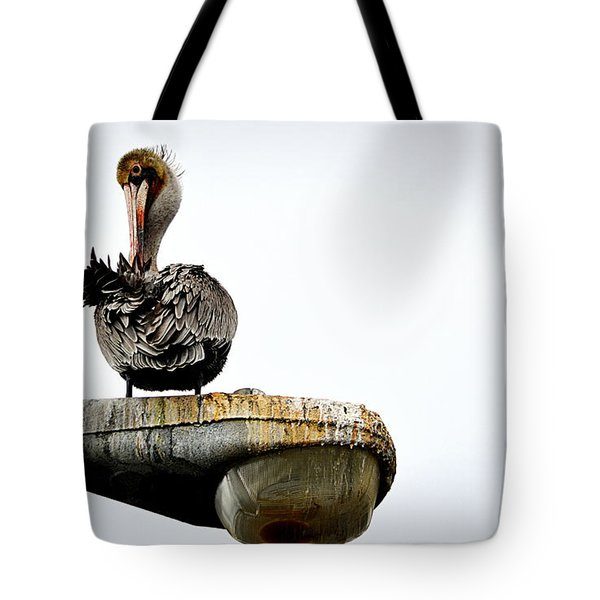 Grooming Time Tote Bag