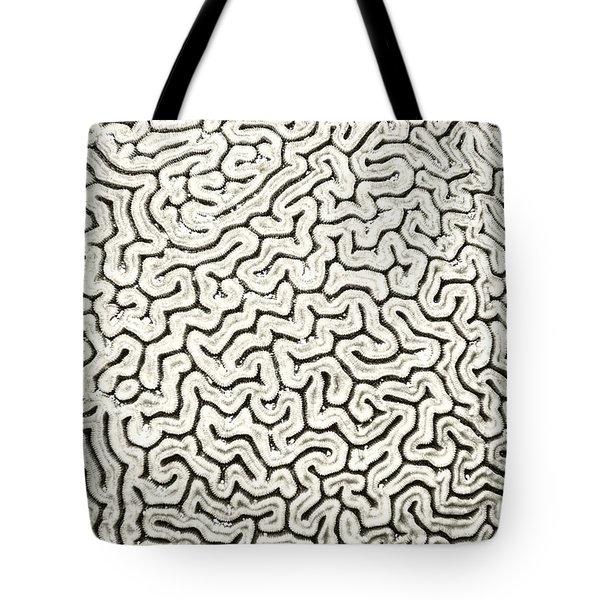 Grooved Brain Coral Tote Bag