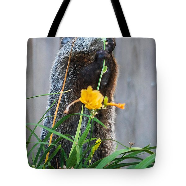 Groundhog And Flowers Tote Bag by Edward Peterson