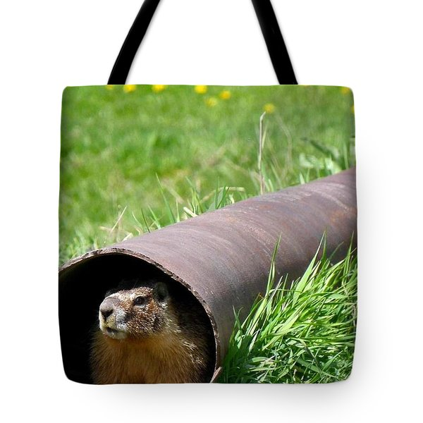 Groundhog In A Pipe Tote Bag