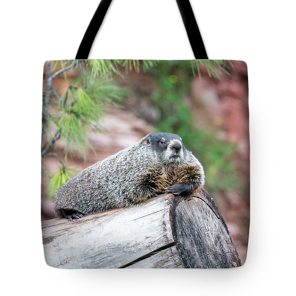 Groundhog On A Log Tote Bag