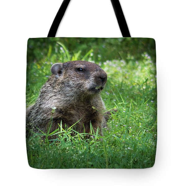 Groundhog Posing  Tote Bag