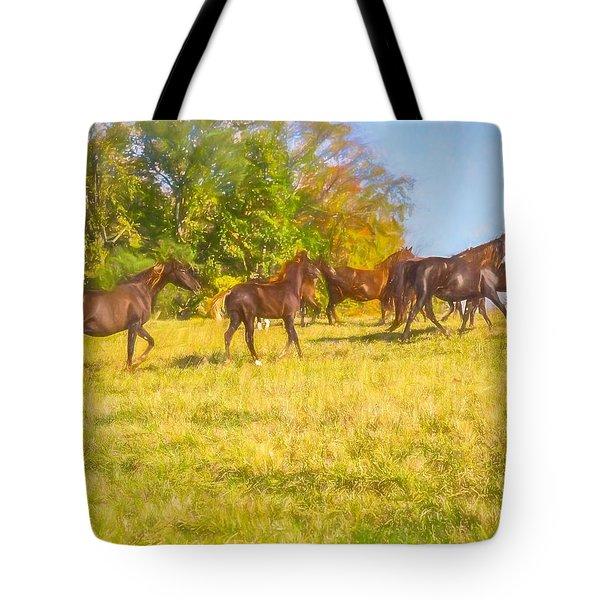 Group Of Morgan Horses Trotting Through Autumn Pasture. Tote Bag