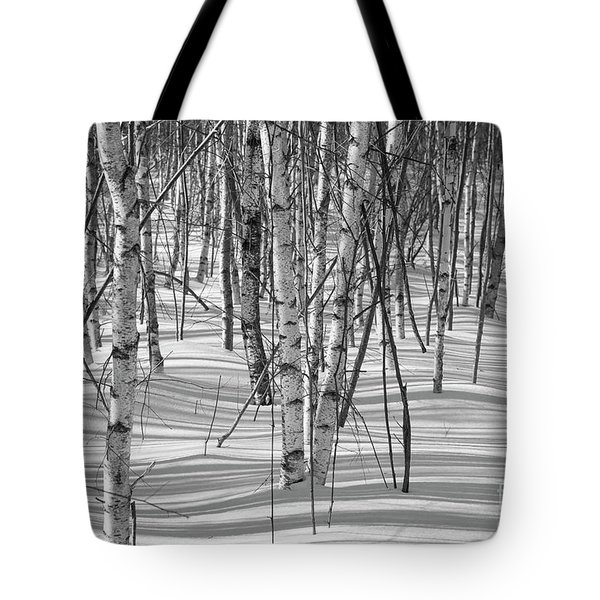Group Of White Birches Tote Bag