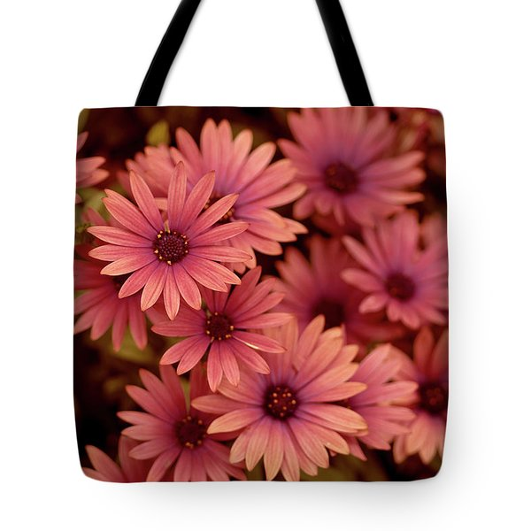 Grouped Together Tote Bag