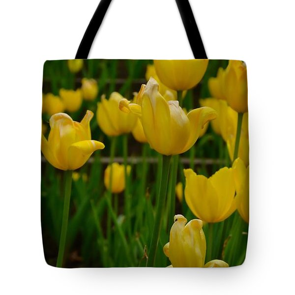 Grouping Of Yellow Tulips Tote Bag