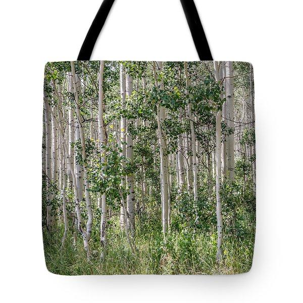 Grove Of Quaking Aspen Aka Quakies Tote Bag
