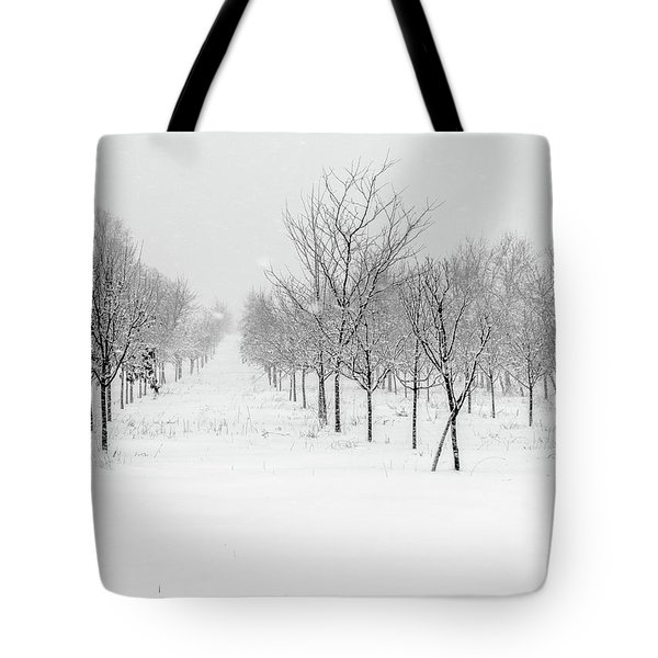 Grove Of Trees In A Snow Storm Tote Bag