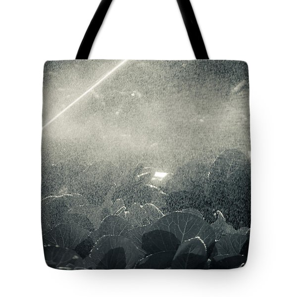 Growing Cabbage Tote Bag by Scott Sawyer