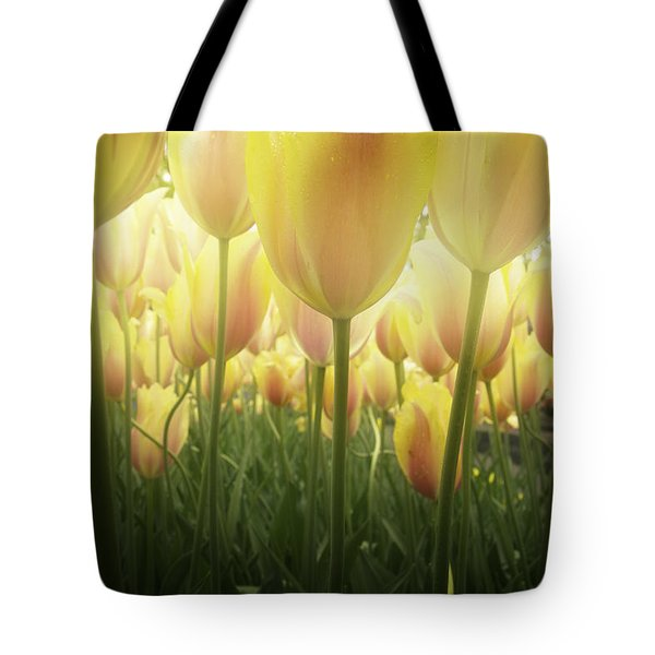 Growing  Tulips  Tote Bag by Anastasy Yarmolovich