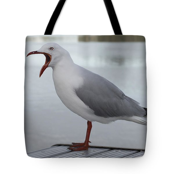 Tote Bag featuring the photograph Grumpy Seagull 01 by Kevin Chippindall