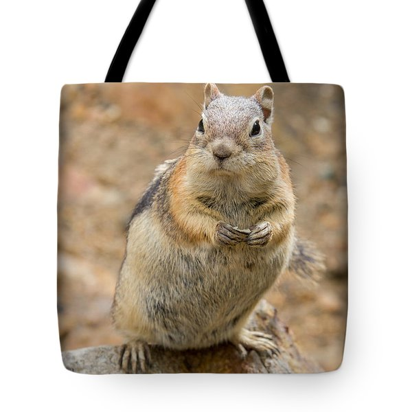 Grumpy Squirrel Tote Bag