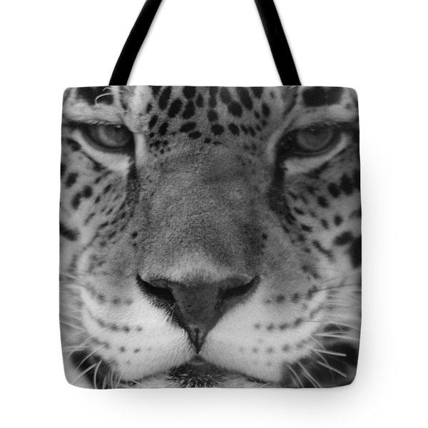 Grumpy Tiger  Tote Bag