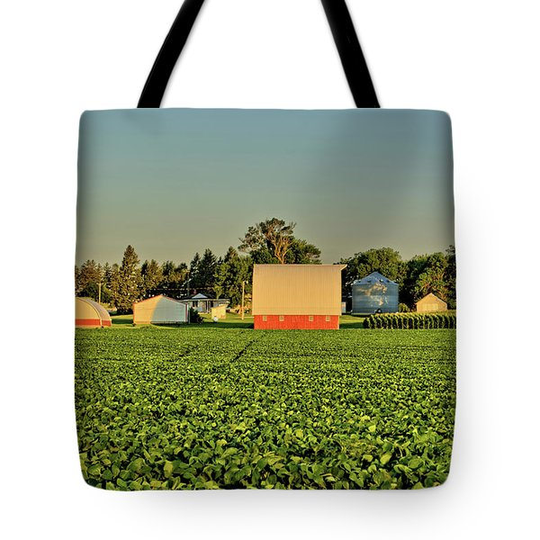 Grundy Beans Tote Bag