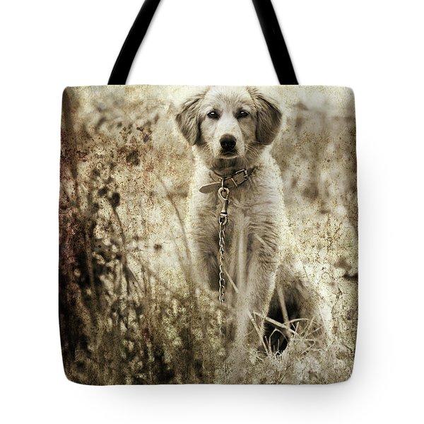 Grunge Puppy Tote Bag by Meirion Matthias