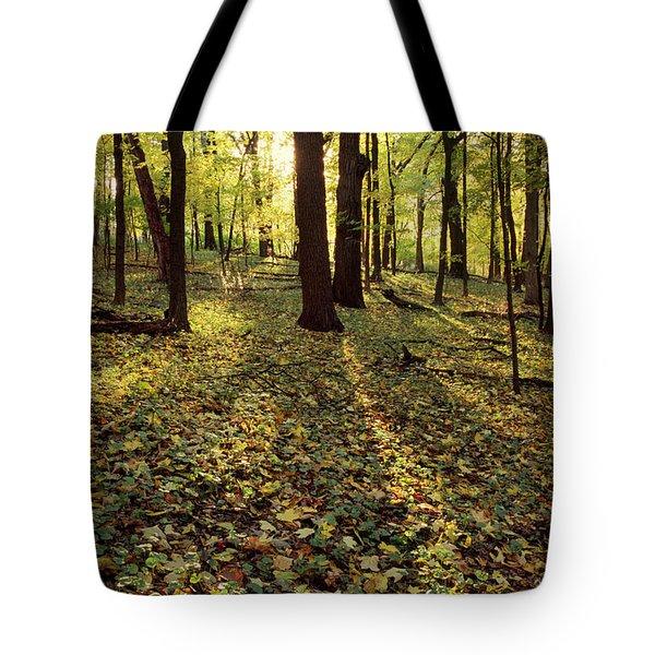 Grunow's Woods Tote Bag