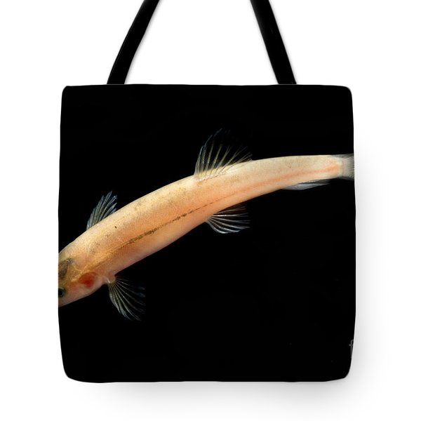 Guanan Groundwater Loach Tote Bag