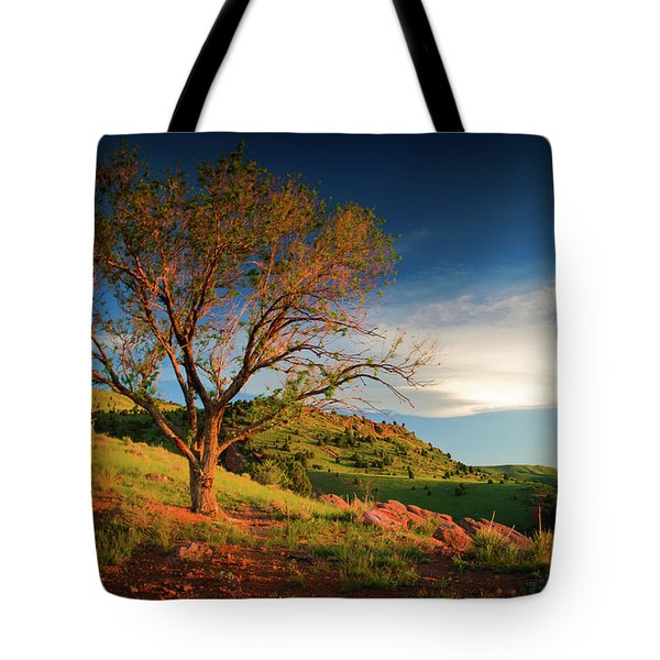 Tote Bag featuring the photograph Guardian Of Light by John De Bord