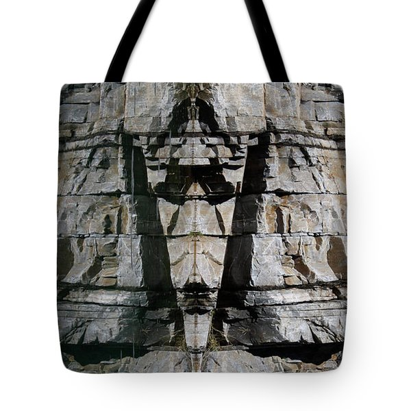 Tote Bag featuring the photograph Guardians Of The Lake by Cathie Douglas