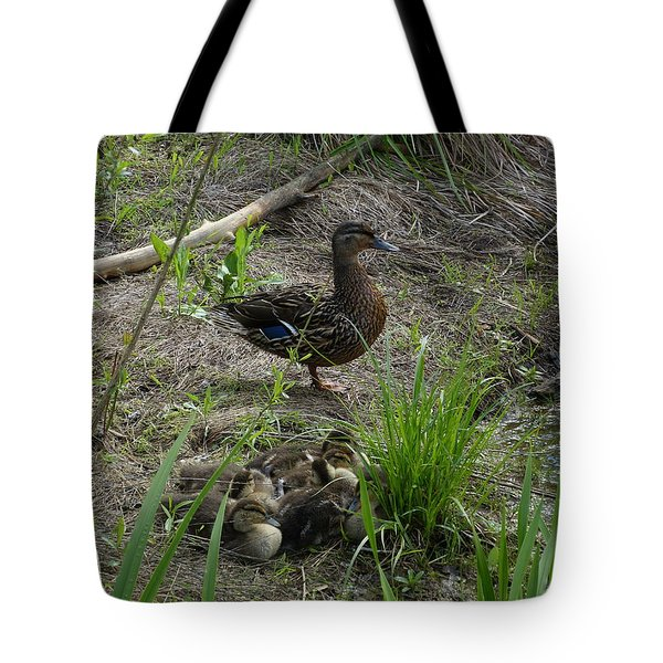 Guarding The Ducklings Tote Bag by Donald C Morgan