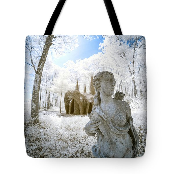 Tote Bag featuring the photograph Guarding The Fort 2 by Brian Hale